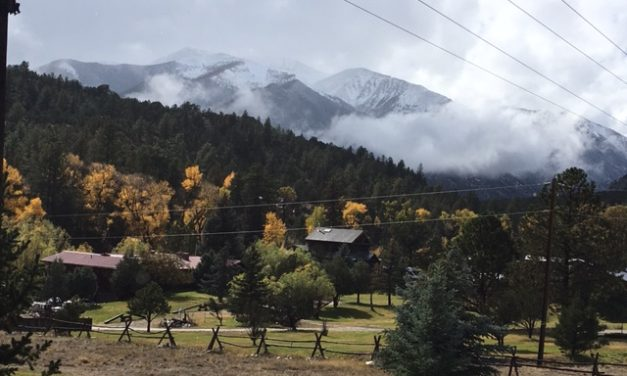 Chaffee County Leaf Viewing Locations for Local Adventure