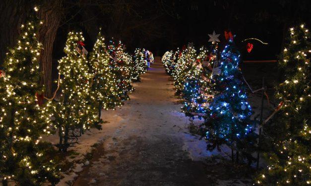 Salida's Holiday Park lights up the season