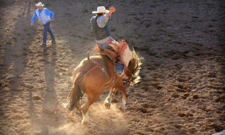 Collegiate Peaks Stampede Rodeo back for 98th consecutive year