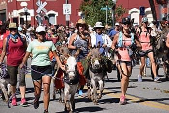 Buena Vista 'Gold Rush Days' Postponed to 2021