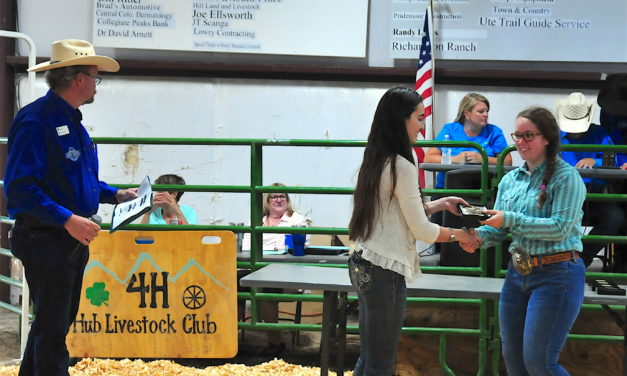 County fair honors 4-H winners, has record $250,000 livestock sale