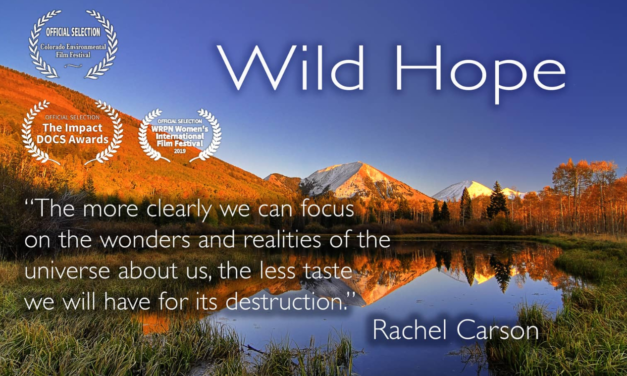 SteamPlant to host Aug. 31 free screening of 'Wild Hope'