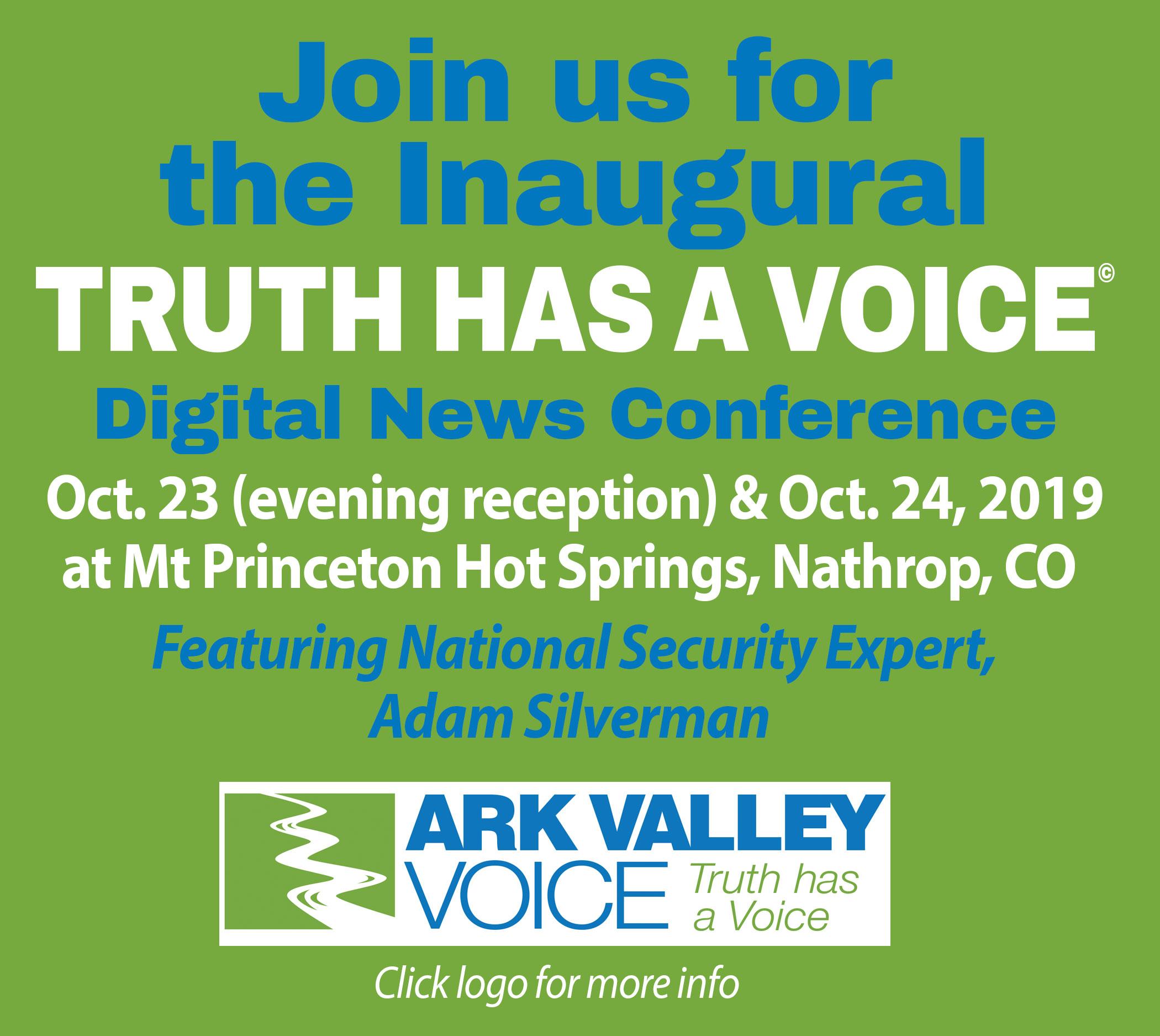 Ark Valle Voice Digital Conference Sidebar