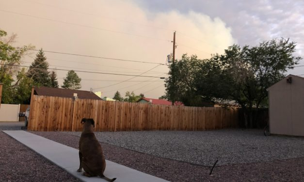 Chaffee County Public Health and Colorado Department of Public Health and Environment Issue Air Quality Health Advisory for Wildfire Smoke