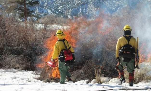 Chaffee County applies for New Colorado State Fire Resiliency Grant