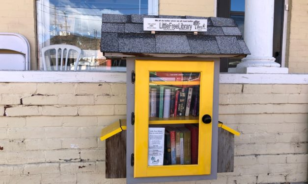 New chapter for Little Free Libraries, But Hopefully No Sad Ending