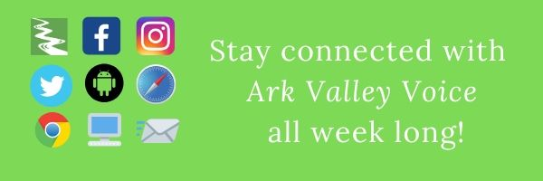 Setting Up Ark Valley Voice as a Homepage App for Apple and Android Devices