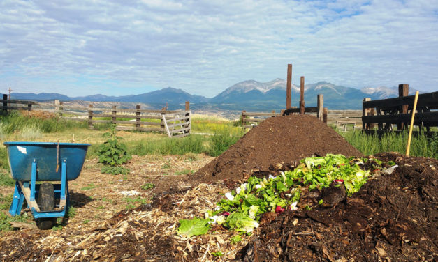 GARNA Thursday March Lecture Series: All About Composting and Tour of Elements Mountain Compost