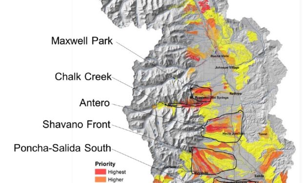 Chaffee County Forest Health Council plans a mid-county fuel break