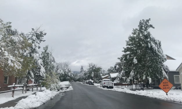 Salida to Pick Up Broken Tree Limbs and Re-purpose into Wood Chips For Community