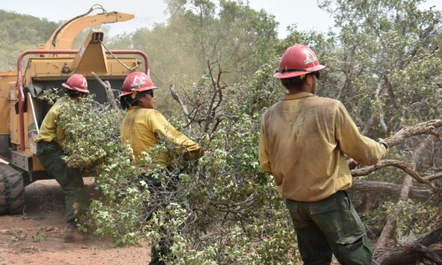 Grizzly Creek Fire Determined to be Human-caused