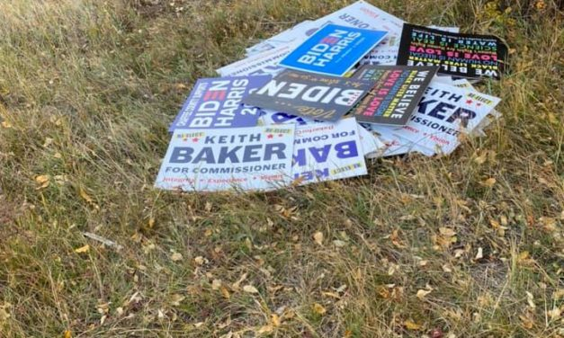 Buena Vista looking to increase numbers of election-season signs, year-round flags