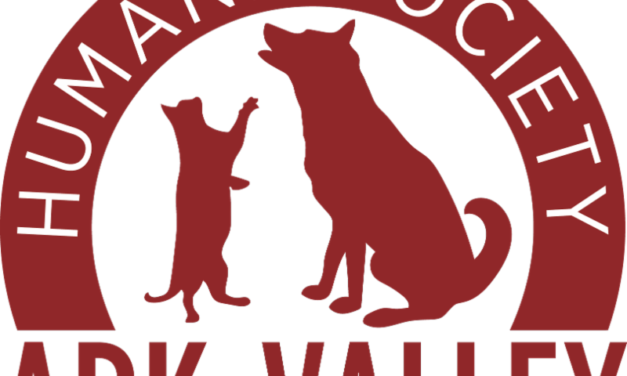 Ark-Valley Humane Society's Bow Wow Film Festival Starts February 19