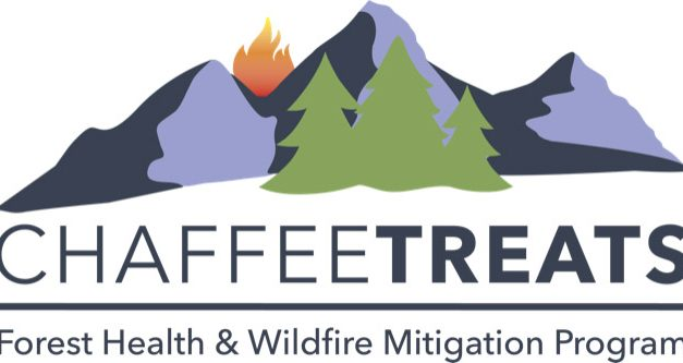 Local wildfire mitigation gets a $192K boost from American Forest Foundation