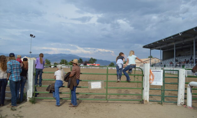 Chaffee County Fair has Successful First Day