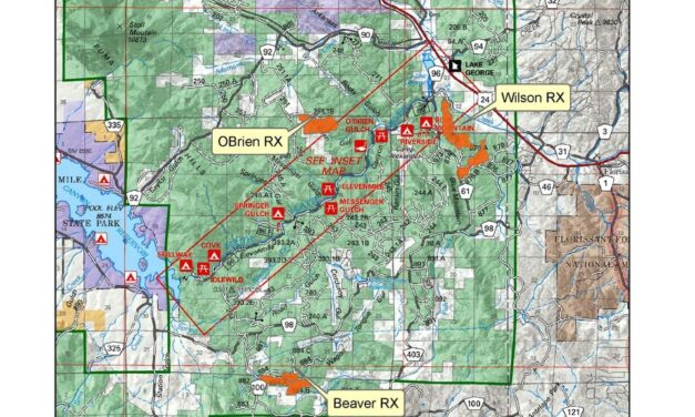 South Park Ranger District to conduct prescribed burns in Wilson, Obrien, and Beaver project areas