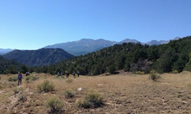 Wild Connections to Host BLM Wild Lands Day Hike at Badger Creek